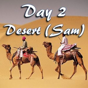 Day 2 in Sam desert