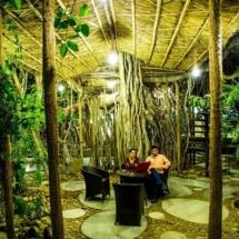 13. Tree house Garden