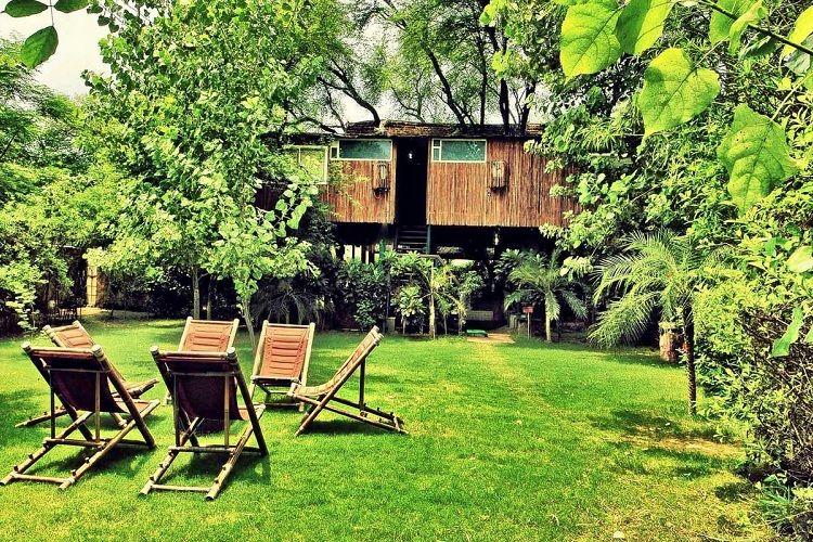 The tree house resort Jaipur
