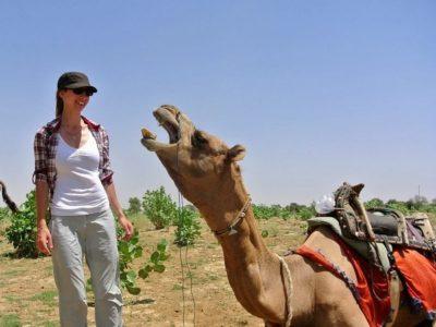 10. Camel Safari