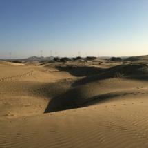 7. Sam sand dunes